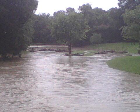 park submerged